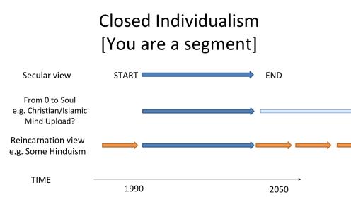 Essay Help! Brain Criterion of Personal Identity?