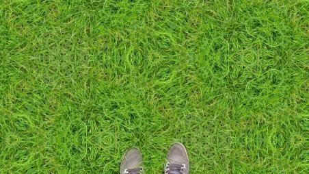 Grass_on_2cb_by_inifinity