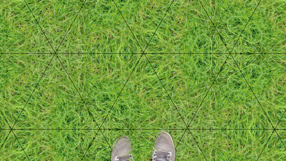grass_symmetries