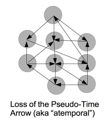 pseudo_time_arrow_loss