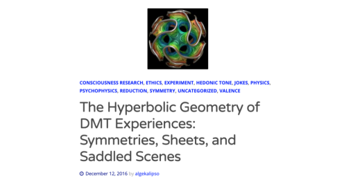 Hyperbolic Geometry of DMT Experiences copy